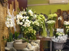 interieur-magasin-3