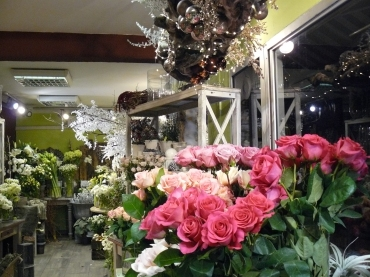 interieur-magasin-5