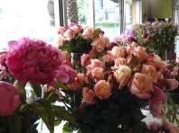 Roses et Pivoines 2