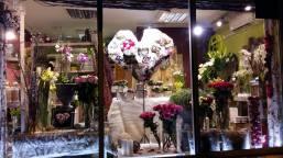 vitrine-saint-valentin